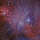 NGC 2264 RGB HA-O3,                                Vincent