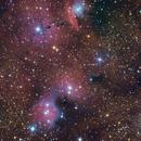 NGC6559 VC200L,                                Richard Muhlack