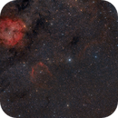 From IC 1396 Elephant's Trunk Nebula to NGC 7023 Iris Nebula,                                Marzio Bambini