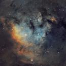 NGC7822 in Cepheus,                                Bob Stevenson