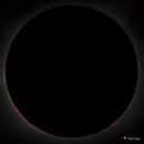 The Sun's Mighty Chromosphere,                                Damien Cannane