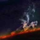 Sun - prominences detail (1),                                Stephan Reinhold