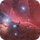 IC434 Horsehead Crowd Image (x268),                                Morten Balling