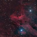 IC 5070 Pelican nebula HaLRGB,                                Frank Rauschenbach