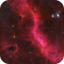 """The Great Divide"" LDN 1622, Barnard's Loop, and M78,                                John Travis"