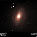 M81 Bode's Galaxy,                                Pieter