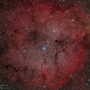 IC 1396,                                Richard S. Wright Jr.