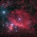 Horsehead nebula,                                Johannes Bock