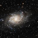 M33 La galaxie du Triangle,                                Roger Bertuli