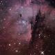 NGC281,                                Randal Healey