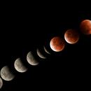 Lunar Eclipse 2021,                                Molly Wakeling