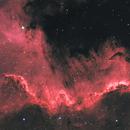 NGC7000,                                Niamor