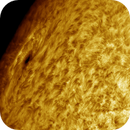 Sunspot AR2741, HA, Colored, 05-07-2019,                                Martin (Marty) Wise