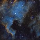 North America and Pelican nebulas (SHO),                                Andrew Gutierrez