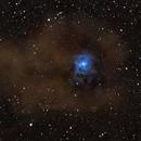 Iris Nebula NGC 7023,                                Norm Fox