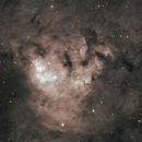 NGC 7822, in Cepheus,                                Steven Bellavia