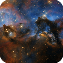 NGC 2074 - Seahorse of the LMC,                                Steven Marx