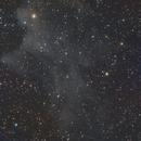 IC2118,                                pasquito