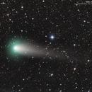 Comet 21P/Giacobini-Zinner and internal structure,                                José J. Chambó