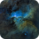 NGC 6188 - Fighting Dragons of Ara,                                Wayne Stronach