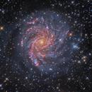 NGC 6946,                                tonyhallas