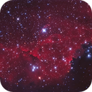 NGC2327 area in the Seagull  LRGB+Ha,                                Christopher Gomez