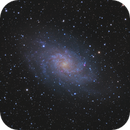 M33 - Triangulum Galaxy,                                Andreas Reifke