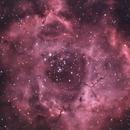 NEBULOSA ROSETTA,                                StarMax