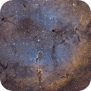 IC1396 Elephant Trunk-SHO,                                Michael Blaylock