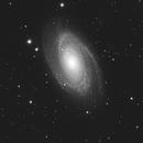 Messier 81,                                astronono