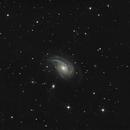 NGC 772,                                Vlad