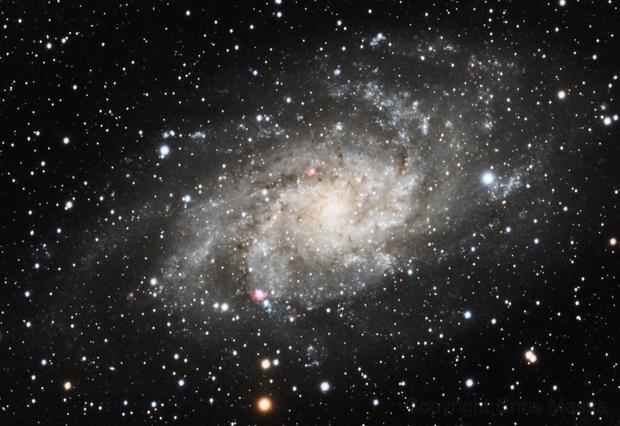 M33 - Triangulum Galaxy,                                Chris Massa