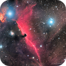 The Horsehead and Flame in LHaRGB,                                Scott