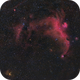 Seagull Nebula (IC 2177) and Thor's Helmet (NGC 2359),                                herwig_p