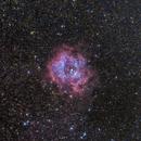 Rosette Nebula,                                Björn Hoffmann