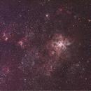 Tarantula Nebula,                                glennb44