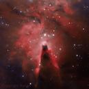 NGC 2264 - Cone Nebula,                                Renan