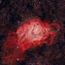 M8 (NGC6523) Lagoon Nebula,                                brad_burgess