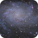 """M33 """"The Triangulum Galaxy."""" TS 8"""" Carbon a first and last light. RGB. 2 Pane mosaic.,                                Pat Rodgers"""
