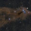 Dust & Dark Clouds of Corona Australis (Three Panel Mosaic),                                Frank Breslawski