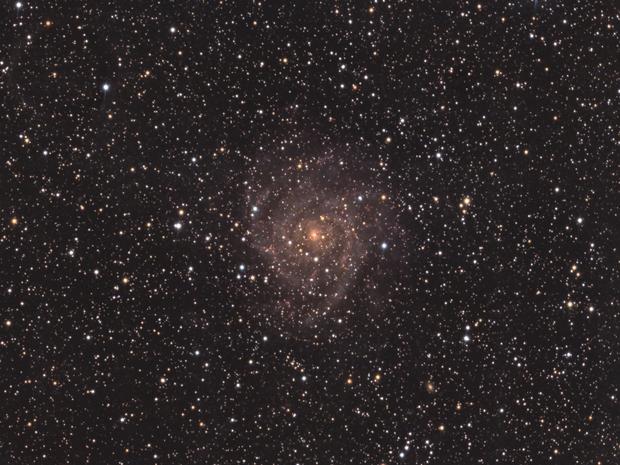 IC342 Hidden Galaxy,                                Gene