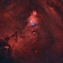 NGC 2264,                                Alcarreno