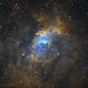 NGC 7536 Narrowband SHO,                                Gary Opitz
