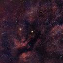 The Heart of Cygnus,                                Daniel Erickson