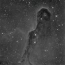 Vdb 142 Elephant's Trunk Nebula in Ha,                                Francesco di Biase