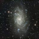 M33,                                David Swager