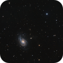 NGC 772 or Arp 78,                                Barry Wilson