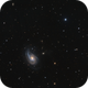 NGC 772 or Arp 78,                                Barry Wilson
