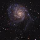 World of Old ( M101, The Pinwheel Galaxy ),                                Reza Hakimi