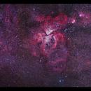 Nebulae of the South: Statue of Liberty to Eta Carina,                                Göran Nilsson